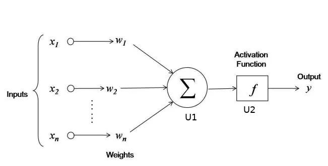 Neural diagram